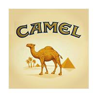 کمل - CAMEL